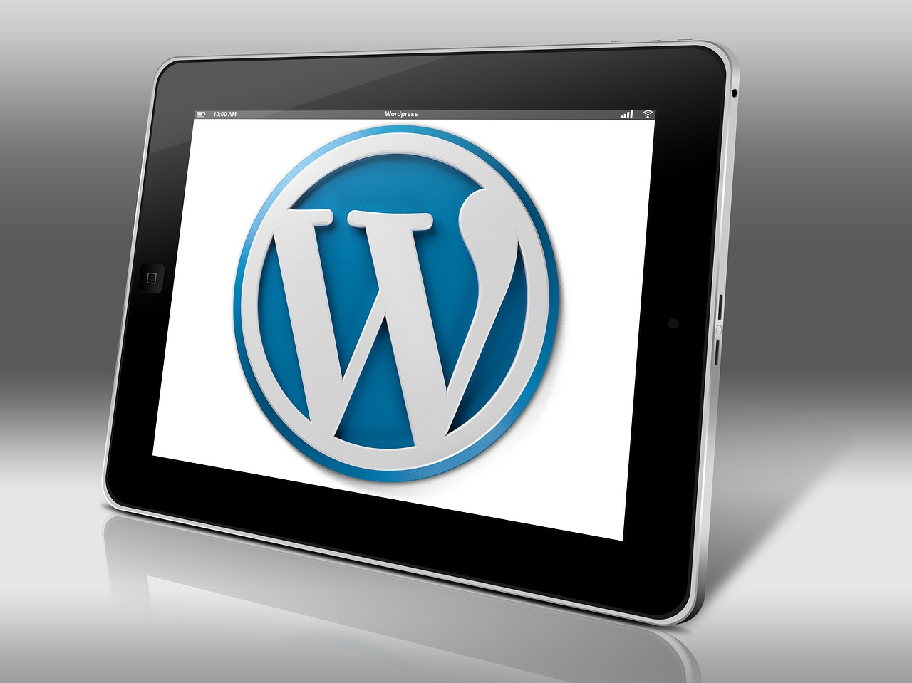 WordPress12.13
