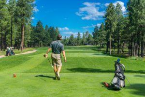Golf9.29